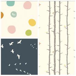 Birch Basics