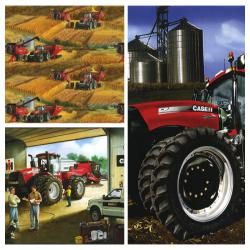 Case IH Modern Red Tractors